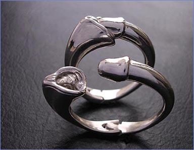sex-ring.jpg